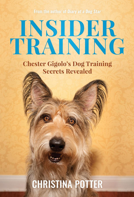 Insider Training by Christina Potter